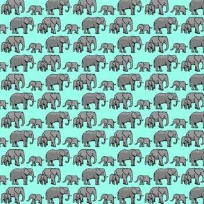 Elephant Family Turquoise