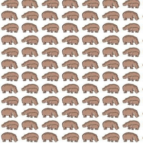 Hippos White