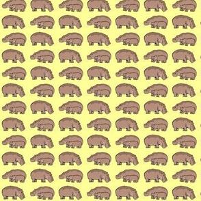 Hippos Yellow