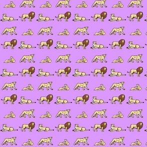 Lions Purple