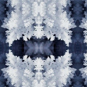Snow Crystals 3