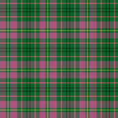 Taylor family tartan, high key pink