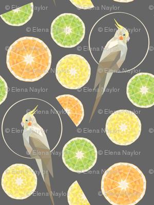 Citrus cockatiel