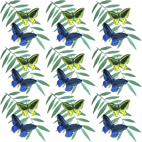 Jungle butterfly fabric by ivankacostru on Spoonflower - custom fabric
