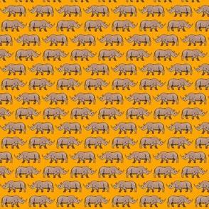Rhino Orange