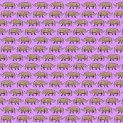 Rrhino_two_purple_shop_thumb