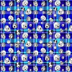 OES_faces_Blue_plaid_2