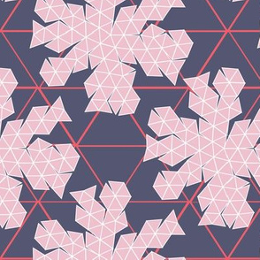 Geodesic Template pink