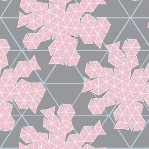 Geodesic Dome Template grey