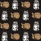 Fox & Raccoon