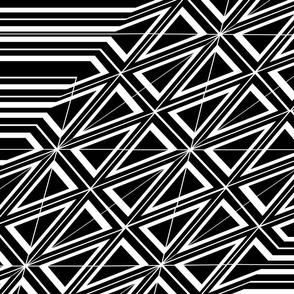 Geodesic in Black & White
