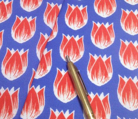 Doodle Tulip (Fryske)