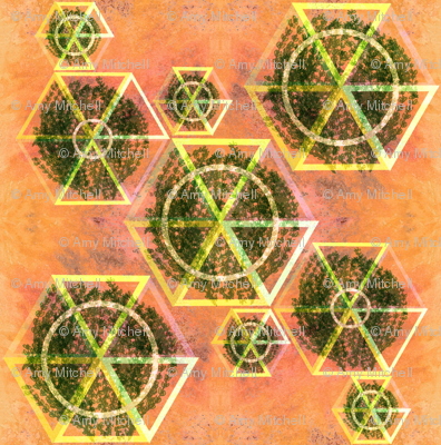 geodesic on Mars