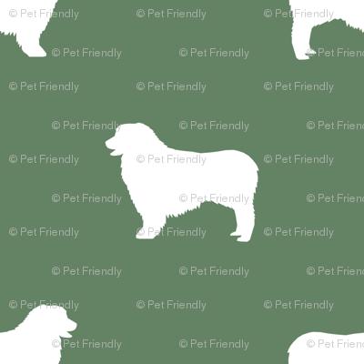 Australian Shepherd silhouette dog breeds med green