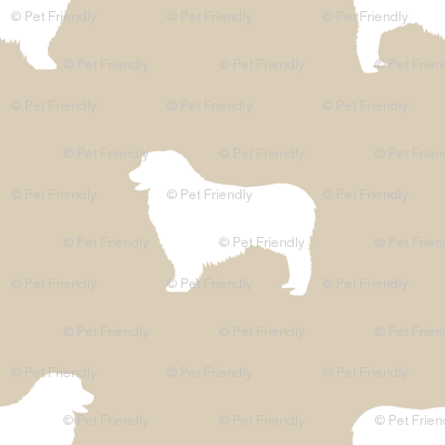 Australian Shepherd silhouette dog breeds sand