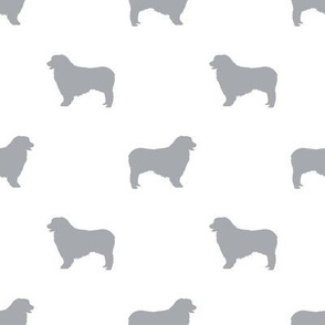 Australian Shepherd silhouette dog breeds white grey