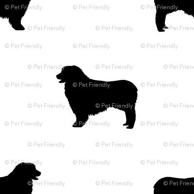 Australian Shepherd silhouette dog breeds white