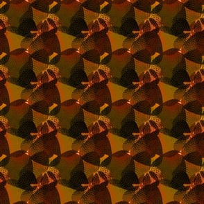 Orange Rounded Triangles