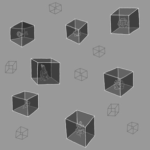 Things in Cubes (solids) (gray)