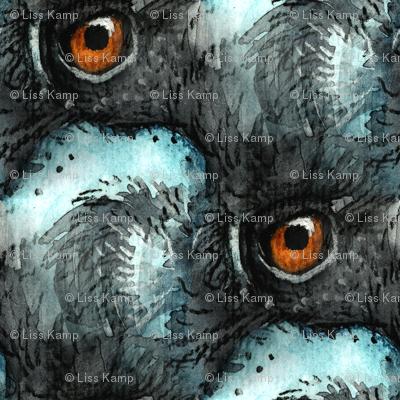 Aqua Emu Eyes