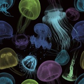 Electric Jellyfish in Black