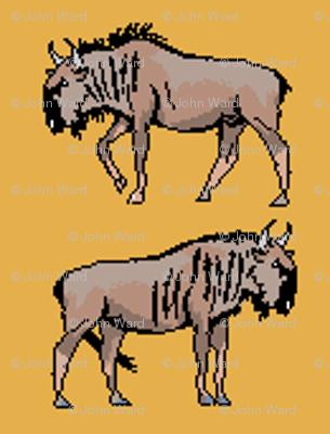 Wildebeest Orange