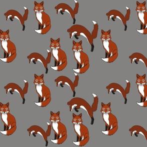 Foxes dark grey