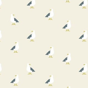 Seagulls in beige and grey
