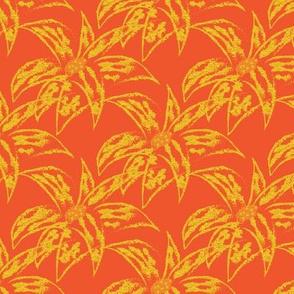 Loud Lilies 1