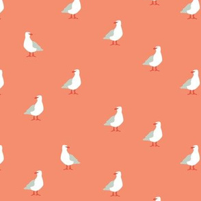 Seagulls in peach