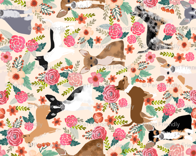 Chihuahua Floral Fabric Dogs Cute Pets Fabric Pet Dog