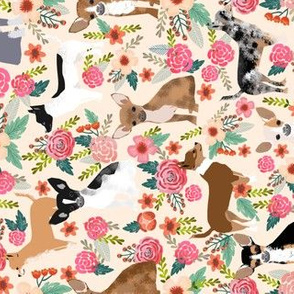 chihuahua floral fabric dogs cute pets fabric pet dog chihuahuas fabric