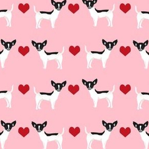 Chihuahua piebald heart fabric pet dog breed pnk