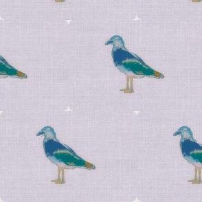 Seagull Parrot
