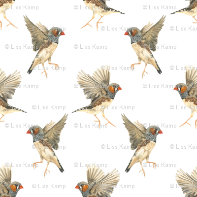 Patternfinches300large_preview