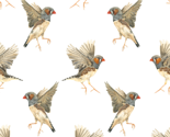 Patternfinches300large_thumb