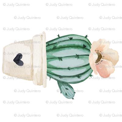 "7"" Brand New Day Cactus / White / 90 degrees"