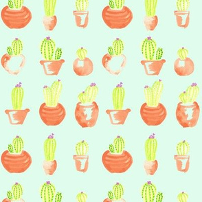 Watercolor Cactus Succulent ||  Mint Green terra cotta clay orange _Miss Chiff Designs