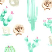Rrcactushedgehog-01_shop_thumb