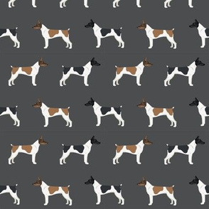 Rat Terrier dog fabric simple pattern 2