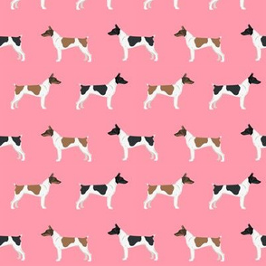 Rat Terrier dog fabric simple pattern 4