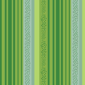 Cacti Mix - Stripes Green