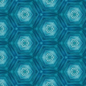 water hexagon