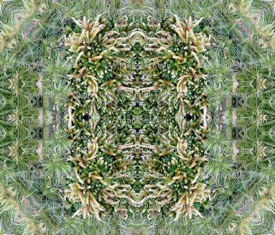 green_below_mandala