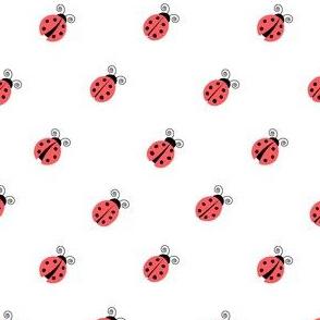 ladybug red (45)