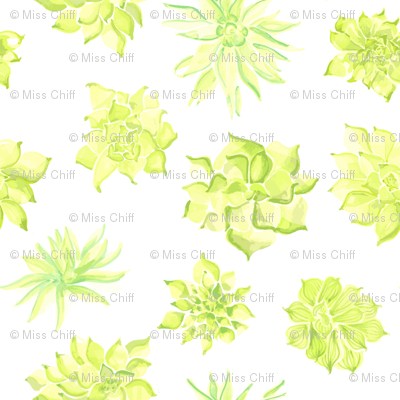 Watercolor Succulent Lime Green Yellow White Floral Southwest Spring Botanical _Miss Chiff Designs