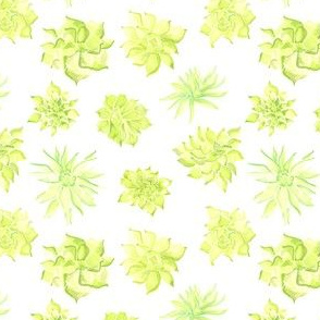 Watercolor Succulent Lime Floral Southwest_Miss Chiff Designs