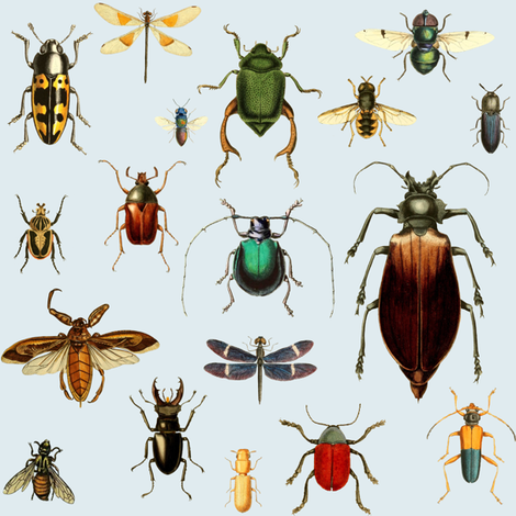 BUGS COLLECTION / VINTAGE / BLUE fabric by shopcabin on Spoonflower - custom fabric