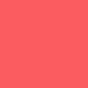 solid ladybug red