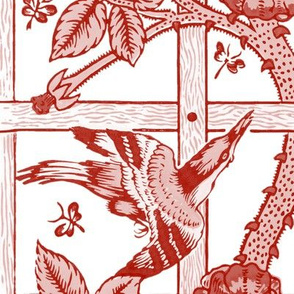 The William Morris Collection ~ Birds On A Trellis ~ Turkey Red and White